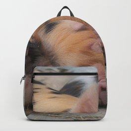 Sleeping Piglets Backpack