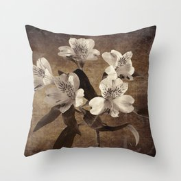 Vintage Flowers Digital Collage 19 Throw Pillow