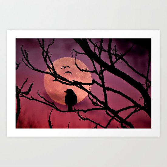 Moonlit dusk Art Print