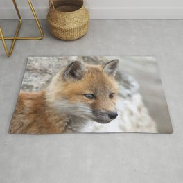 Watercolor Fox, Red Fox 25, Union Reservoir, Boulder County Rug