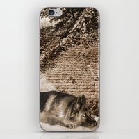 german iPhone & iPod Skins featuring German Shepherd by Erika Kaisersot