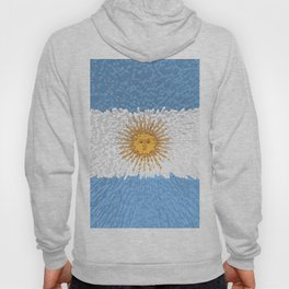 Extruded Flag of Argentina Hoody