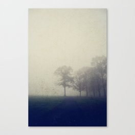 into the unknown Canvas Print