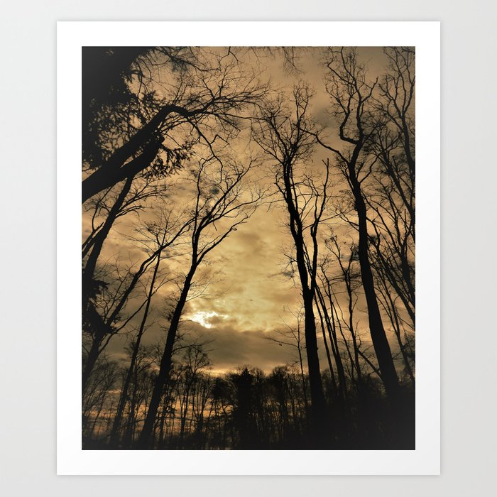 snow clouds above the wood Art Print