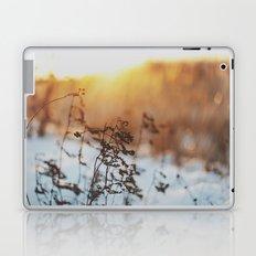 winterlight Laptop & iPad Skin