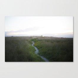 Blue Bird Trail - Amarillo, Tx Canvas Print