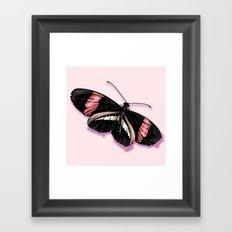 Papillon rouge et noir Framed Art Print
