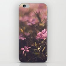 Ants have it pretty good sometimes.  iPhone & iPod Skin