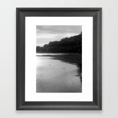 Peace of Swan Lake Framed Art Print