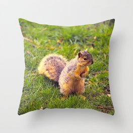 Levi The Squirrel Throw Pillow