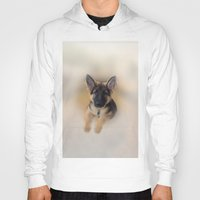 german shepherd Hoodies featuring German Shepherd by Judith Lee Folde Photography & Art