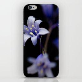 Bluebell Flower against black iPhone Skin