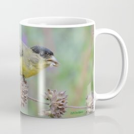 Lesser Goldfinch Snacks on Seeds Coffee Mug