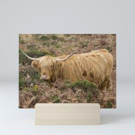 Highland Lad Mini Art Print