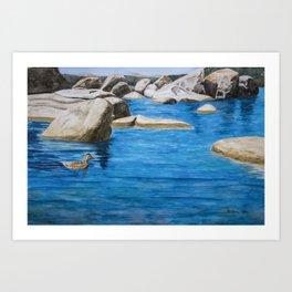 Morning Swim at Lake Tahoe Art Print