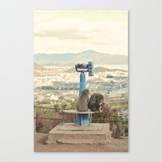 Saruyama Monkeys, Kyoto Canvas Print