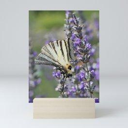 Swallowtail Butterfly Mini Art Print