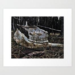Cow Bones III Art Print