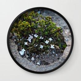 Microcosm Wall Clock