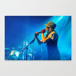 the ting tings Canvas Print