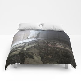 Did you see? Comforters