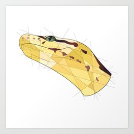 Monty the Ball Python Art Print