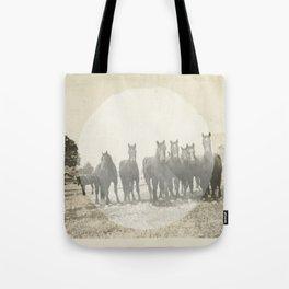 Band of Horses - White Tote Bag