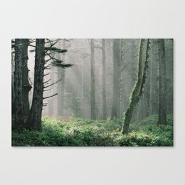Real life or Skyrim? Canvas Print