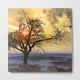 Tree in November sun Metal Print