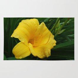Daylily flower Rug