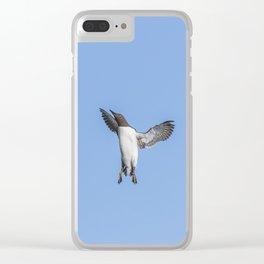 Guillemot Landing Clear iPhone Case