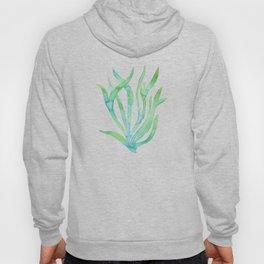 Green Seaweed Hoody