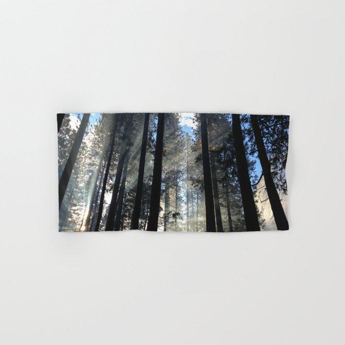 Sunlight Shines Through the Trees Hand & Bath Towel