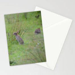 Rabbits In A Meadow Stationery Cards