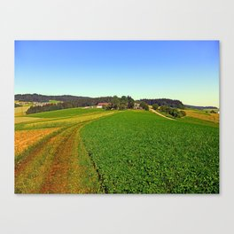 Hot summertime hiking trail | landscape photography Canvas Print