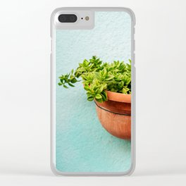 Little succulents, Burano Italy Clear iPhone Case