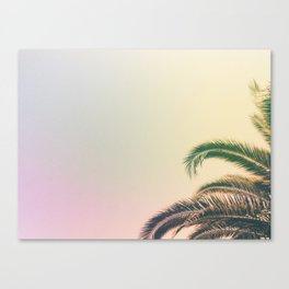 Minimal - Palm tree leafs photography I  Canvas Print