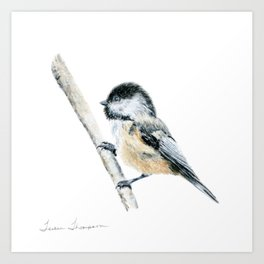 """""""Chicka-dee-dee-dee"""" a painting of a Chickadee by Teresa Thompson Art Print"""