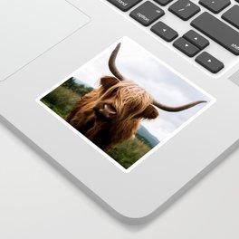 Scottish Highland Cattle in Scotland Portrait II Sticker