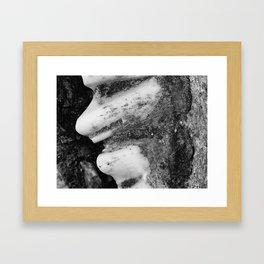 Jawbone II Framed Art Print