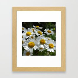 Palpable Happiness Framed Art Print
