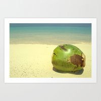 coconut wishes Art Prints featuring Coconut by Michael S.