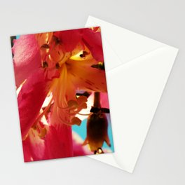 Pink_Spring Stationery Cards