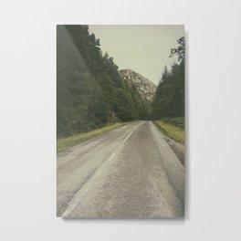 A Road in the Wilderness II Metal Print