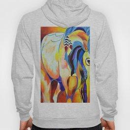 Native American Horse Hoody