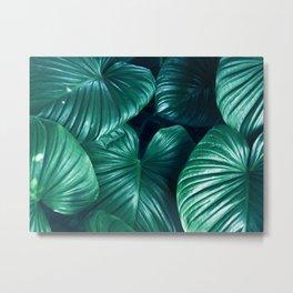 Plant collage VIII Metal Print