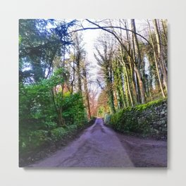 Your road Metal Print