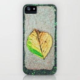 Moss Roads iPhone Case
