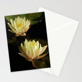 White water lilies 5 Stationery Cards