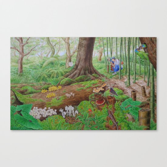 A Day of Forest (5). (dead wood ecosystem) Canvas Print
